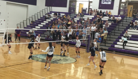 Volleyball Swiftly Defeats Tooele