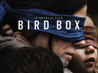 Cover Your Eyes, Another 'Bird Box' Meme