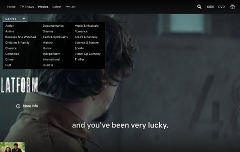 Screenshot of all the genres Netflix offers.
