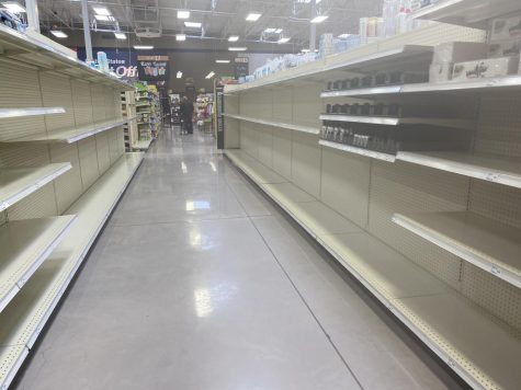 This picture is no surprise to anyone. Most stores have been out of Toilet paper and paper towels since the beginning of this pandemic.