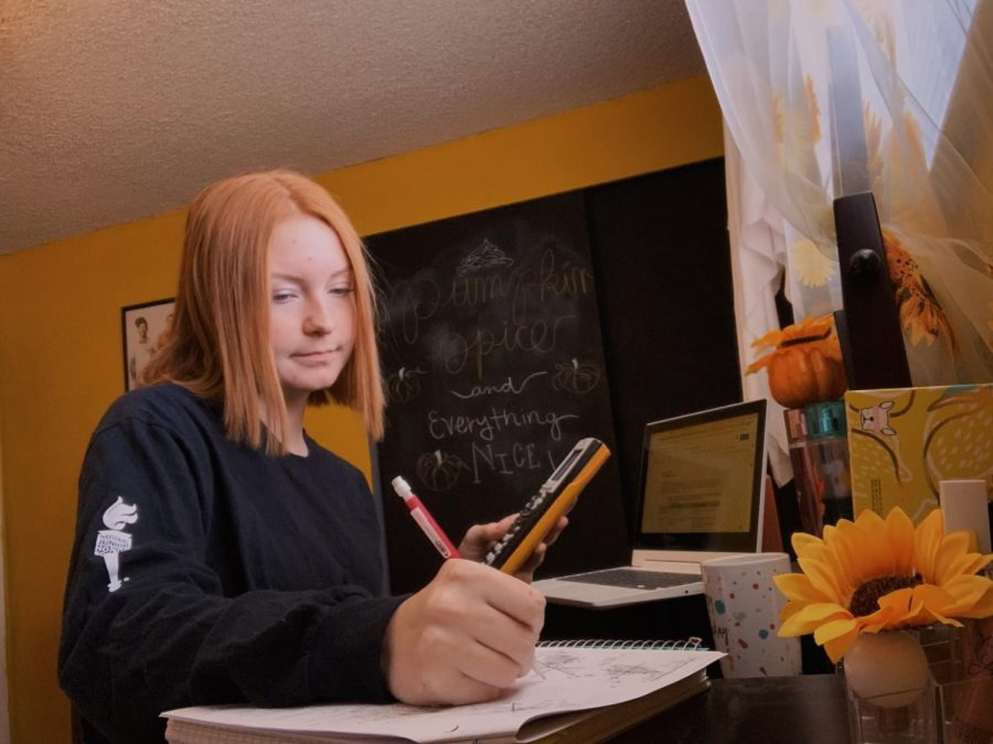 Skyla Ulrich doing her math homework while learning at home.