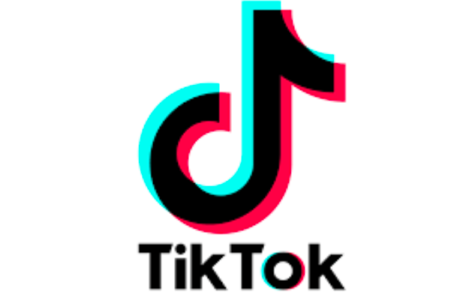 7 Tik Tok Trends That Carried Us Through 2020